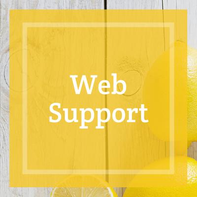 Maidstone website support